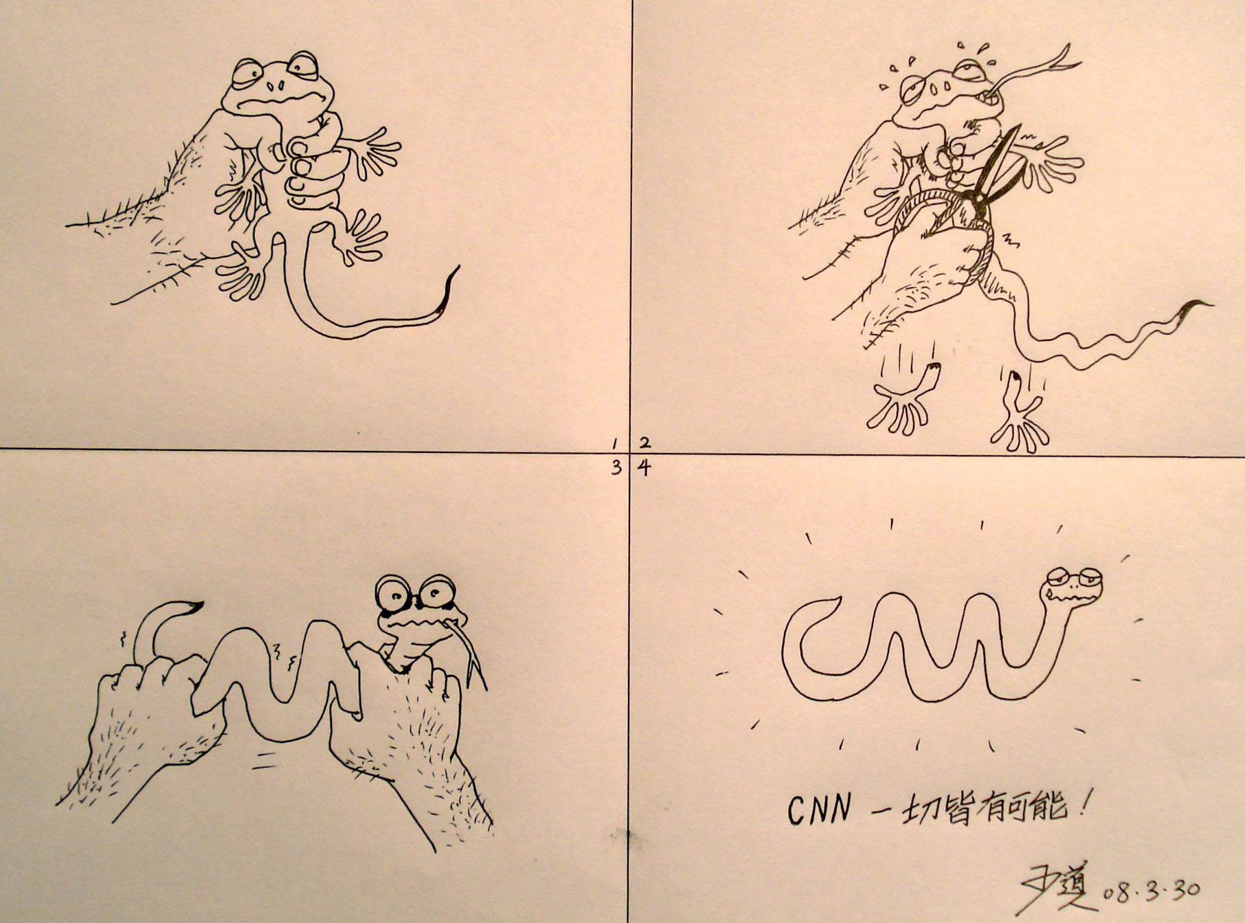 CNN frog